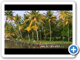 Very best of Kumarakom - I, Kottayam, Kerala